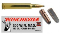 WINCHESTER-POWER-POINT 300wm