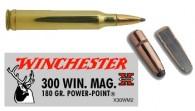 WINCHESTER-POWER-POINT 300wm